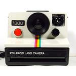polaroid-land