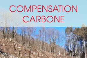 compensation-carbone-2